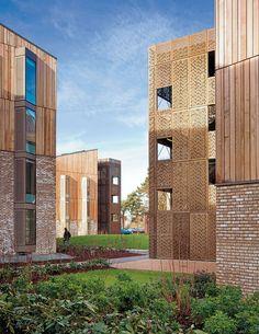 Student Village Hertfordshire Hawkins Brown