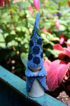 blueberry gnome