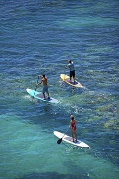 Stand-up paddling off Olowalu, on the west side of Maui. http://www.hawaiisoulbodyadventures.com