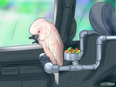 Take Your Pet Bird Outside Step 7.jpg I know just a painting but I would do this for my bird.