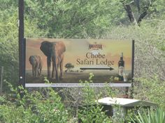 Amarula Cream at the Chobe Safari Lodge