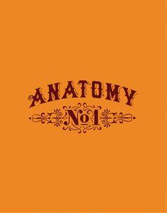 CF Napa Brand Design - Anatomy