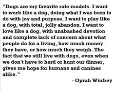 One of my favorite dog quotes. Give your dog a big sloppy kiss tonight!