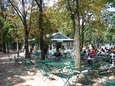 木の下 カフェ - Google 検索