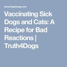 Vaccinating Sick Dogs and Cats: A Recipe for Bad Reactions   Truth4Dogs