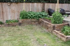 Raised beds from used oak railway sleepers