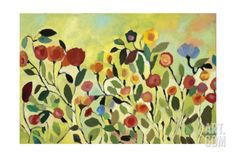 Wild Field Stretched Canvas Print by Kim Parker at Art.com