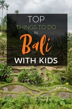 Top reasons why Bali is the perfect family friendly destination to travel with kids! As a family of we give our best tips on how to visit Bali with kids Bali With Kids, Travel With Kids, Family Travel, Vietnam Travel, Asia Travel, Travel Packing, Amazing Destinations, Holiday Destinations, Bali Family Holidays