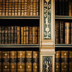"wanderthewood: ""Library at Warwick Castle - Warwickshire, England by Elena Rumianceva """