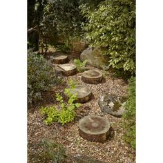 Log Stepping Stones at Homebase -- Be inspired and make your house a home. Buy…