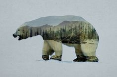 The Arctic Polar Bear Art Print...This would be beautiful to do with one of my Dad's arctic pictures!