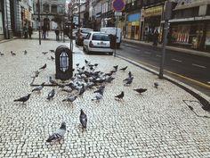 Porto, Portugal 2013