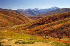 Wasatch Range, utah  Google Image Result for http://www.mountainphotographer.com/wp-content/uploads/2009/10/utah_oct09_rasta.jpg
