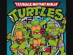 The TMNT theme song. if you want the song, download it here: http://www.megaupload.com/?d=DYBVTBGD