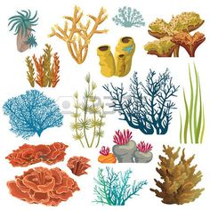 Set of cartoon underwater plants and creatures. Vector isolated corals and algaes. Ilustração de Set of cartoon underwater plants and creatures. Vector isolated corals and algaes. arte vetorial, clipart e vetores stock. Underwater Tattoo, Underwater Drawing, Titanic Underwater, Underwater Plants, Underwater Theme, Underwater Flowers, Coral Reef Drawing, Coral Reef Art, Coral Painting