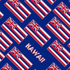 Smartphone Case - State Flag of Hawaii  - Blue Diagonal Named