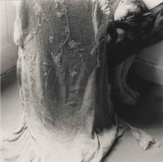 The living veil. Photo © Francesca Woodman