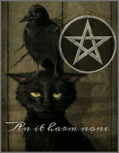 wicca An it harm none, do what you will, for all acts of pleasure are my worship.