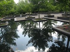 B3) Water features - Reflections