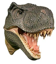 A large T Rex dinosaur head for a dinosaur theme baby nursery wall. A realistic dinosaur wall decoration that is so real and very prehistoric. Dinosaur Head, Dinosaur Bedroom, Dinosaur Wall Stickers, Animal Heads, Baby Boy Nurseries, T Rex, Decals, Nursery, Prehistoric