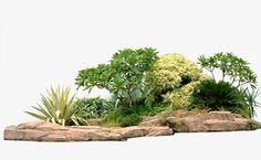 Creative garden plants, Greening, Garden Plants, Stone PNG and PSD Landscape Elements, Landscape Architecture, Landscape Design, Paint Splash Background, Collage Background, Rendering Art, Photoshop Rendering, Vector Trees, Tree Psd