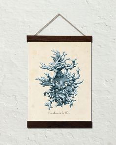 Les Coralliens Blue Sea Coral No. 1 Canvas Wall Hanging