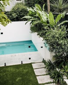 Depending on design we make it a priority to implement a dense layered planting scheme around every pool. Effective planting ensures a pool is effectively integrated into the landscape, and not a stand alone feature. These beautiful plants are from Backyard Pool Landscaping, Backyard Pool Designs, Small Backyard Pools, Swimming Pools Backyard, Tropical Landscaping, Swimming Pool Designs, Garden Pool, Outdoor Pool, Outdoor Decor