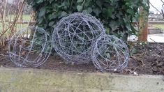 Barbed wire orb for garden