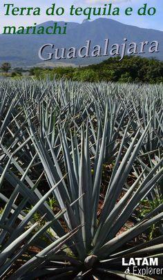 Guadalajara, México - Conheça a terra do tequila e do mariachi.