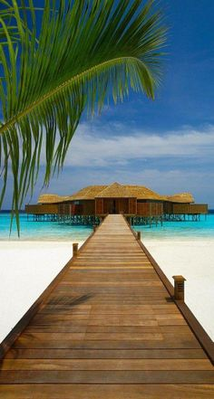 Lily Beach – Maldives