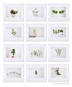 Indoor Garden N3  8x10 Fine Art Photographic by MilesOfLight, $30.00