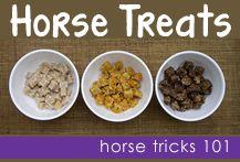 Horse trick training treats
