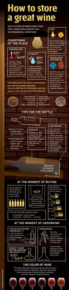 How to store a great wine? @LiquorListcom www.LiquorList.com #LiquorList #WineStorage