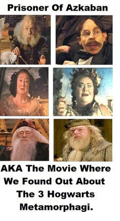 okay good. i'm glad i'm not the only one. we know about dumbledore because the first one passed away, but nope. still don't understand how flitwick suddenly got like, 50 years younger (he was played by the same person in all 8 movies), and idk what happened with the fat lady painting. ahhh. i love continuity.