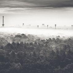 #AUTUMN #MORNING by Ronny Behnert #photocircle #ff #followfriday @bewegungsunschaerfe #BERLIN #blackandwhitephotography #longexposure #funkturm #fog #forest #cityscape
