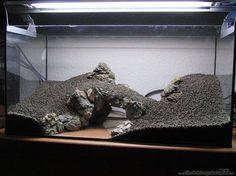 hardscaping aquarium