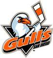 San Diego Gulls (2003-06) San Diego Sports Arena