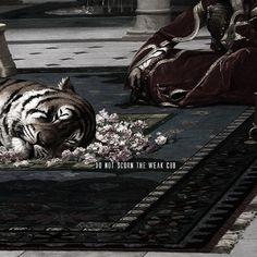 a brutal tiger --