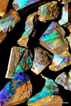 rough Boulder Opal ,ready to be cut into Stones.