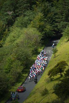 2012 Olympic Games, men's road race - Box Hill - The peloton climbs Box Hill. Photo: Casey B. Gibson | www.cbgphoto.com