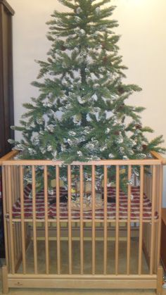 Alternative decorating solutions to keep your Christmas tree upright and your toddler safe this holiday season. Christmas Tree Gate, Cheap Christmas, Toddler Christmas, Christmas Decorations, Christmas Goodies, Christmas Stuff, Christmas Crafts, Winter Crafts For Toddlers, Toddler Crafts
