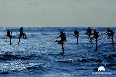 Costa, Sri Lanka, Real Life, Waves, Social, Big, Html, Outdoor, Travel Tours