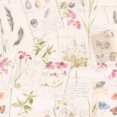Country Notebook Pink / Blue wallpaper by Albany