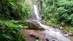La Paz Waterfall Gardens - The Nature Park You Want To Visit