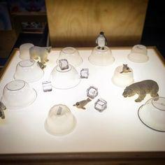 Invitation to play on the light table: Arctic Small World Winter Crafts For Kids, Winter Kids, Preschool Winter, Snow Theme, Winter Theme, Sensory Table, Sensory Bins, Reggio, Polar Animals