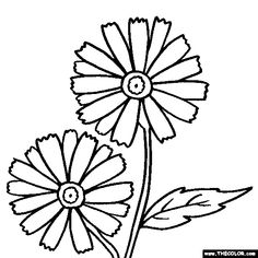 Printable Coloring Pictures Of Flowers Unique Line Coloring Pages Starting with the Letter D Easy Coloring Pages, Pattern Coloring Pages, Online Coloring Pages, Free Printable Coloring Pages, Flower Coloring Sheets, Free Coloring Pictures, Daisy Drawing, Mouse Color, Flowers Online