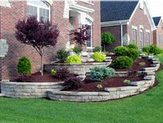 If you are thinking of updating your garden, consider using landscaping bushes and shrubs. Flowers and tree blossoms and leaves fade quickly, but landscaping shrubs and bushes offer year-round beauty and are easy to maintain. You won't be forsaking aesthetics either as shrubs come in a variety of colours and textures, some flower and even provide beautiful berries in the dead of winter.
