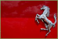 Ferrari Photos serie 14 – Picture of Ferrari : Cool Sports Cars, Sport Cars, Cool Cars, Car Badges, Car Logos, My Dream Car, Dream Cars, Ferrari F40, Lamborghini
