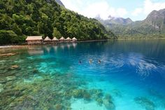 snorkeling Seclusion in the mountains and forest: Ora Beach Resort (Central Maluku)