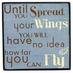Fly #aviationquotesmotivation